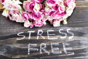 Words Stress Free with Pink Roses on a Rustic Wooden Background.